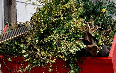 Skip Hire the best option for your garden waste