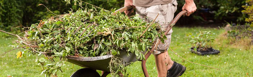Which skip should you use for a gardenclearance?
