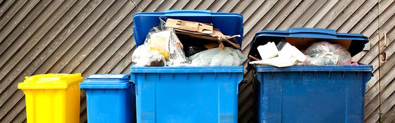 the rubbish consequences of poor waste management feature image