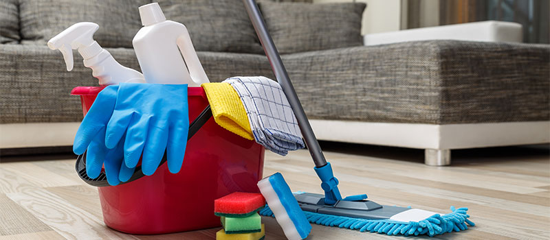 domestic cleaning products